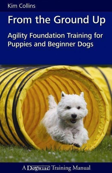 Submissive Articulated Dog Training For Agility Agility Training