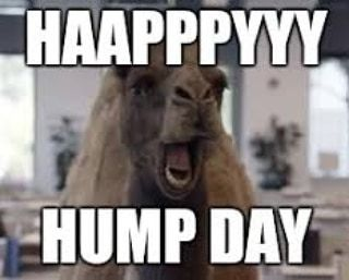 Good Morning And Happy Hump Day It S All Downhill From Here To The Weekend Rustic Rusticdecor Rustichomedecor Funny Cartoons Funny Memes Memes