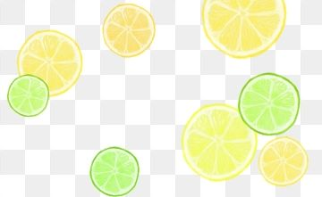 Cartoon Hand Drawn Summer Fruit Lemon Orange Slices Cartoon Hand Painted Summer Fruit Lemon Orange Slice Png Transparent Clipart Image And Psd File For Free Summer Fruit How To Draw