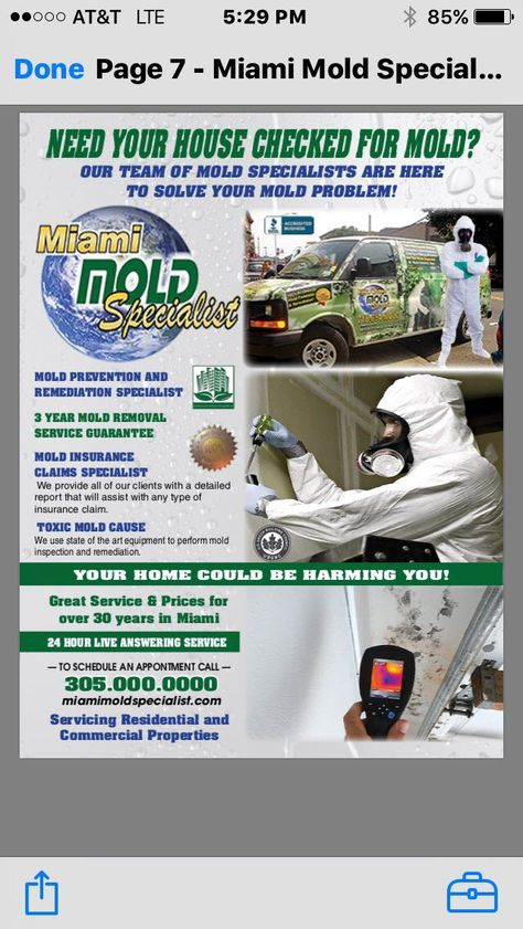Miami Mold Specialist Is A Multi Certified Eco Friendly Mold