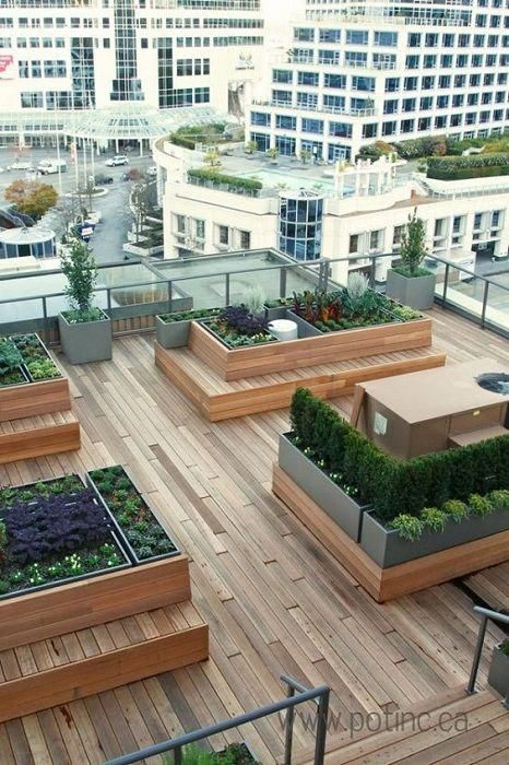 Green Roofs And Great Savings Rooftop Patio Garden Roof Garden Design Roof Garden
