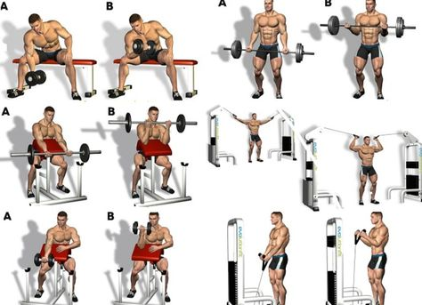 Best Of 5 Biceps Workouts For Men