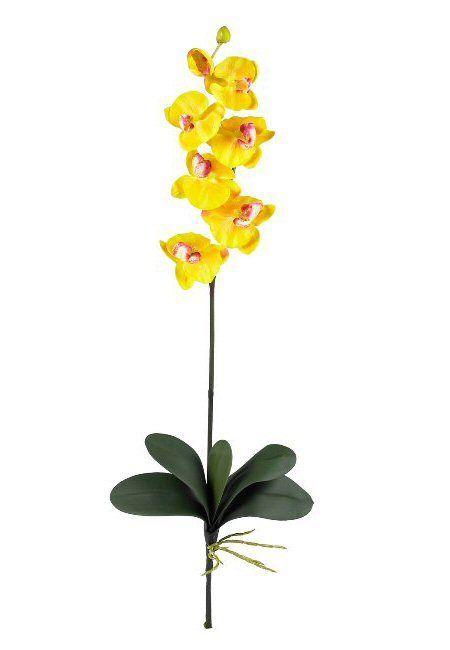 Phalaenopsis Silk Orchid Flower Stems Gold Yellow Set Of 12 Em 2020 Tatuagem Orquidea Orquideas Amarelas Orquidea