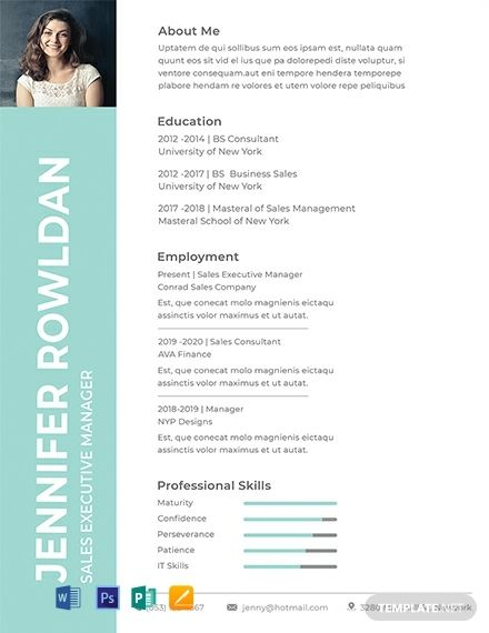 Free Sales Executive Resume Cv Format Template Word Doc Psd Apple Mac Pages Publisher Free Resume Template Word Executive Resume Downloadable Resume Template