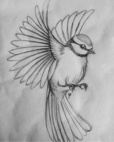 Un petit oiseau à ajouter à une pièce florale ou à un dessin plus grand