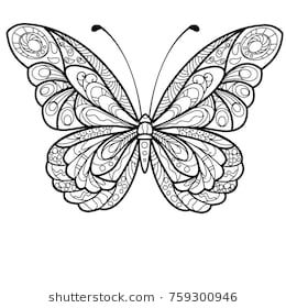 Detailed Butterfly Drawing Butterfly Coloring Page Butterfly Drawing Butterfly Mandala