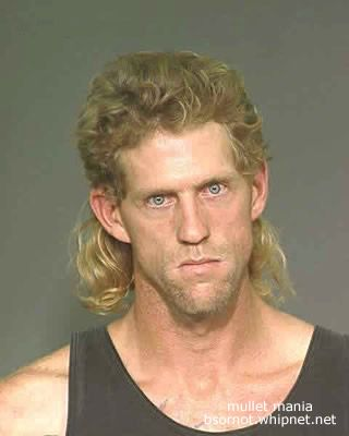 Angry Mullet