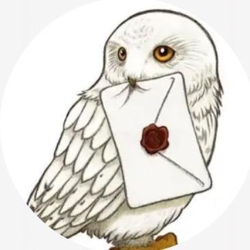 Gryffindor Eat Doritos1 Tiktok Hedwig Harry Potter Harry Potter Tumblr Eulen Zeichnen