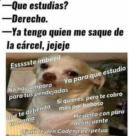 37 Ideas For Memes En Espanol Chistosos Colombianos New Memes Memes En Espanol Funny Memes