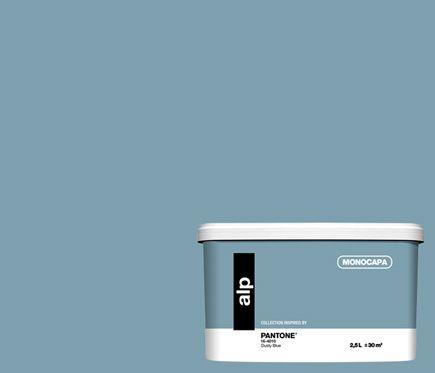 Pintura De Color Para Paredes Y Techos Pantone Dusty Blue