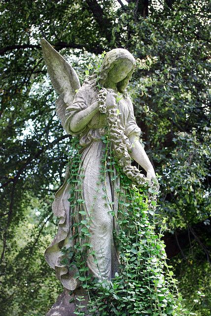 """mynocturnality: """" An angel becoming one with her surroundings at Forrest Hills Cemetery """" Cemetery Angels, Cemetery Statues, Cemetery Art, Statue Ange, I Believe In Angels, Slytherin Aesthetic, Angels Among Us, Guardian Angels, Angel Art"""