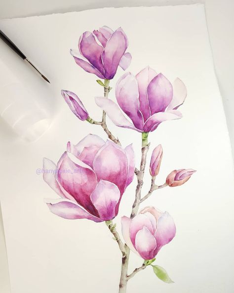 """YOYO ☁️'s Instagram profile post: """"So obsessed with magnolias💜 . . . . . . . . #hanyaoxieart #creatusart #watercolor #watercolour #watercolorflowers #botanicalillustration…"""""""