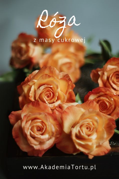 Kurs On Line Roza Z Masy Cukrowej Akademiatortu Pl Cake Decorating Tutorials Cake Decorating Gum Paste Flowers