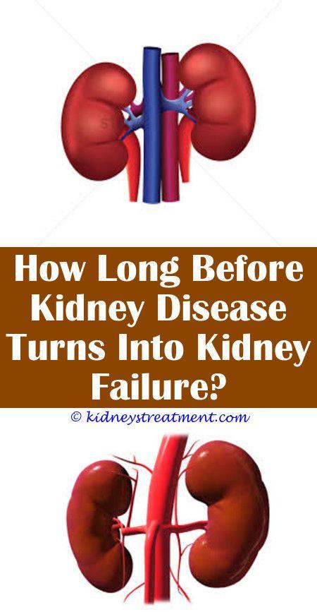 Kidney Disease Renal Kidney Disease Recipes Kidney Disease Awareness Kidney Disease Stages