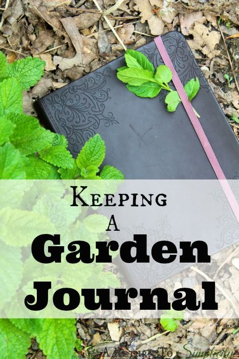 Want to increase your gardening productivity in just a couple minutes per day? Keeping a simple garden journal can greatly increase your gardening success! | areturntosimplicity.com
