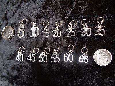 a28a19c5b Celebrate Your Weight Loss Milestone! Number Charm for Weight Watchers  Keychain!