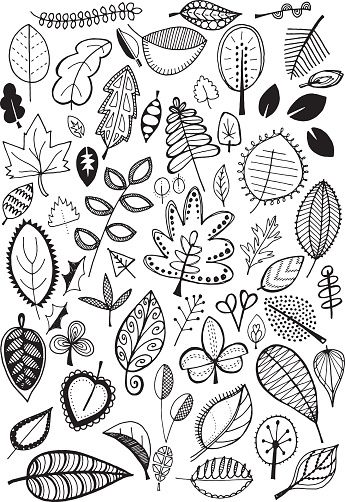 Hand Drawn Vector Doodle Leaves Quirky And Fun Nature Clip Art Easy Drawings Doodle Illustration Doodle Art