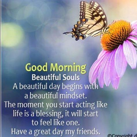 Love and light to all of you!   Shine Bright beautiful Souls!...  Love and light to all of you!   Shine Bright beautiful Souls! . . . . . . . . #lifestyle #inspiration #happy #goodmorning #wednesday #positivevibes #wednesdaymood #quotes #life #wednesdays #instadaily #motivation #fashion #quoteoftheday #picoftheday #wednesdaymotivation #wednesdaywisdom #wednesdayvibes #love #fitnessmotivation #smile #photooftheday #wednesdaymorning #mood #shinebright #souls #spirit #meditate #awaken #psychicvisio