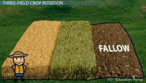 Image Result For Middle Ages Medieval Life Middle Ages Crop Rotation