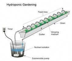 Gartenbau Hydroponischer Hydroponic Gardening Hydroponicsgardening Hydroponische Gartenarbeit Hydroponikgar Hydrokultur Garten Hydrokultur Gartenbau