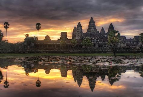 Cambodia. You should go and take me with you.