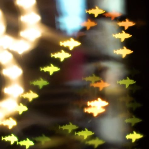 Create Light Shapes With A DIY Bokeh Filter