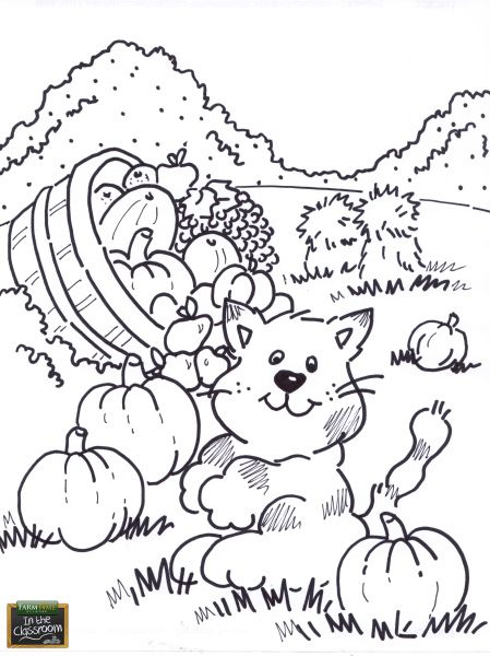 Cat In The Pumpkin Patch Free Teaching Tool