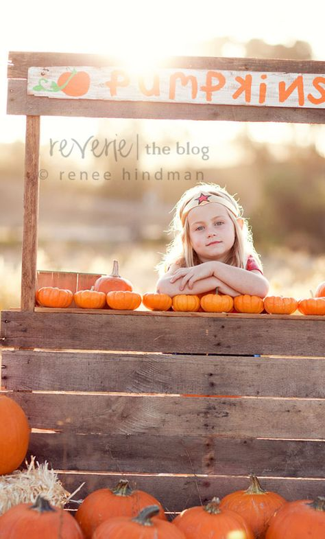 Pumpkin stand photo prop, this could have different signs that go with it for different seasons and photo ideas