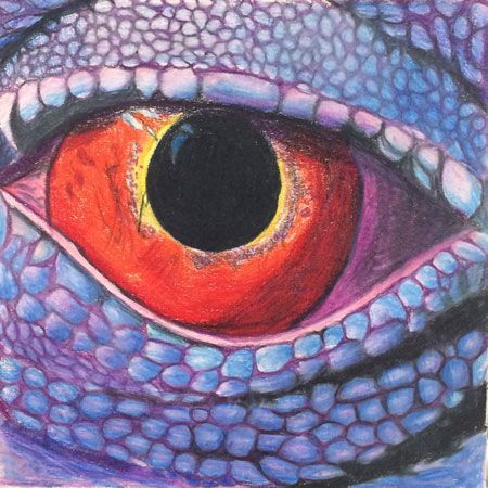 Eye Drawing Colored Pencils Art Lesson Color Art Lessons
