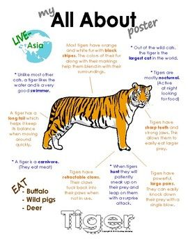 My All About Tigers Workbook Which Includes Poster Teacher S Guide And Student Workbook For Fill In The Bla Animal Facts For Kids All About Tigers Tiger Facts