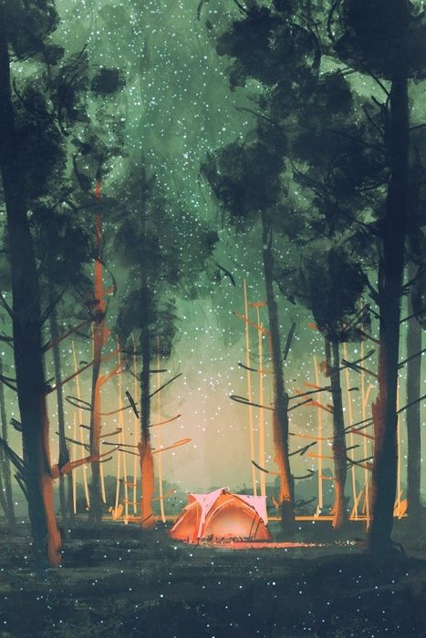 camping in forest at night with stars and fireflies,illustration,digital painting Wall Mural • Pixers® - We live to change