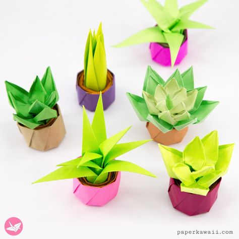 Mini Origami Succulent Plants Tutorial via can find Origami tutorial and more on our website.Mini Origami Succulent Plants Tutorial via Instruções Origami, Origami Ball, Paper Crafts Origami, Origami Design, Paper Crafting, Origami Ideas, Dollar Origami, Origami Bookmark, Simple Origami