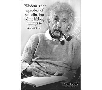 Albert Einstein Wisdom Poster