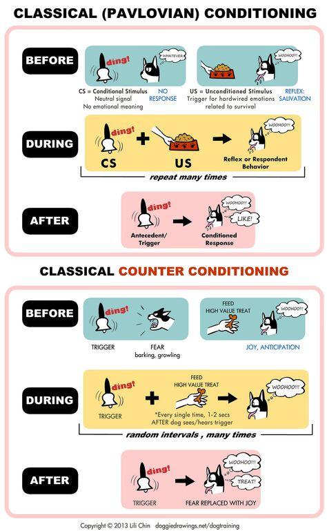Classical Conditioning – conbeh