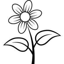 Dessin A Colorier Fleurs Nature 35 Coloriages A Imprimer Dessin Marguerite Coloriage Fleur Coloriage