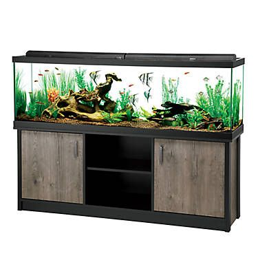 Aqueon Led Aquarium Stand Ensemble 125 Gallon Fish Tank Fish Tank For Sale Aquarium Stand