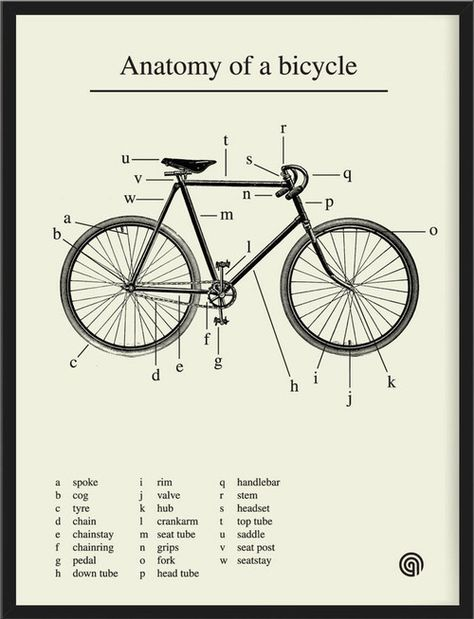 Anatomy of a bicycle, in a lovely print by Antony Oram. Pair with this illustrated vintage bike safety manualand the brief history of the p...