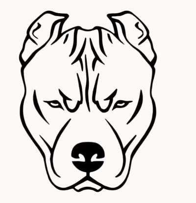 Aprende Como Dibujar Un Perro Paso A Paso Muy Facil Y Rapido