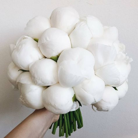 Perfect white peonies for your inspiration🖤 TAG someone who'd love these 💓⁠ ⁠.⁠ Flowers by ⁠. Luxury Flowers, My Flower, Beautiful Flowers, White Peonies, White Roses, Wedding Bouquets, Wedding Flowers, Wedding Bells, Wedding Bride