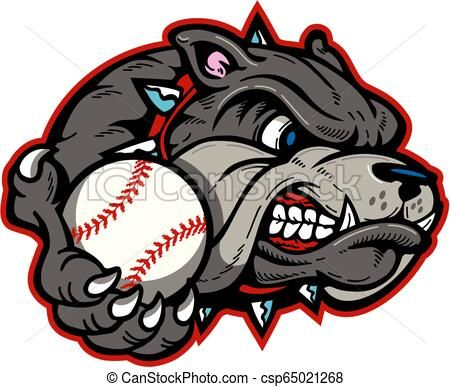Bulldog Baseball Vector Stock Illustration Royalty Free Illustrations Stock Clip Art Icon Stock Clipart Icons Logo Line Baseball Vector Bulldog Art Icon