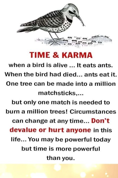 time and karma. this is a great life quote you can learn a lot from it. When a bird is alive ... it easts ants and when the bird had died... ants eat it. One tree can be made into a million matchsticks... but only one match is needed to burn a million trees. Circumstances can change at any time... Dont devalue or hurt anyone in this life.... You may be powerful today but time more powerful than you #quotes #lifequotes #quotesforlife
