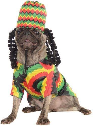 Rasta Dog Funny Pet Halloween Costume Pet Costumes Dog