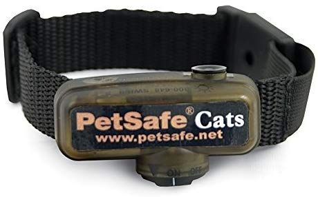 Amazon Com Petsafe Premium In Ground Cat Fence Receiver Collar