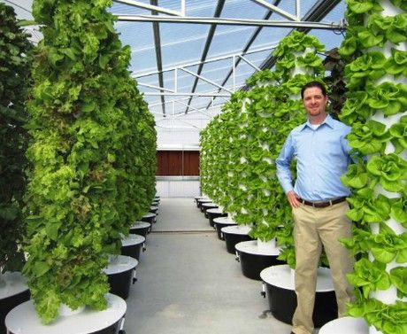 More Information On Why The Tower Garden Is Just As Healthy, If Not More,  As Traditional Gardening. Miki.towergarden.com | Juice Plus+ | Pinterest |  Tower, ...