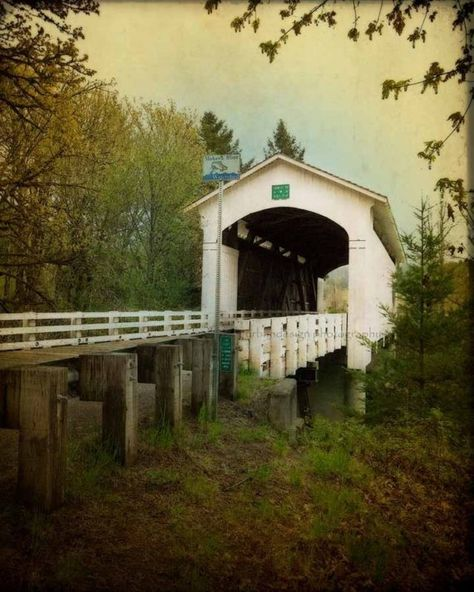 Earnest Bridge.  photo by Urban Designs.