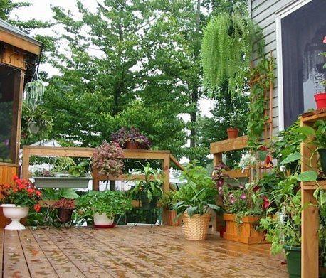 Diez terrazas y patios para tomar ideas Patios - decoracion de terrazas con plantas