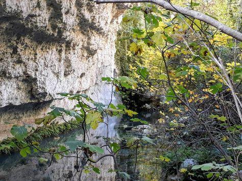 natura The mirror of nature....