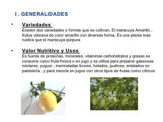 Manejo Tecnico Del Cultivo De Maracuya C Ch Maracuya Fruta Nutritivo