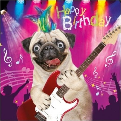 Pug Dog Rock & Roll Funny Gogglies 3D Moving Googly Eyes Birthday Greeting Card