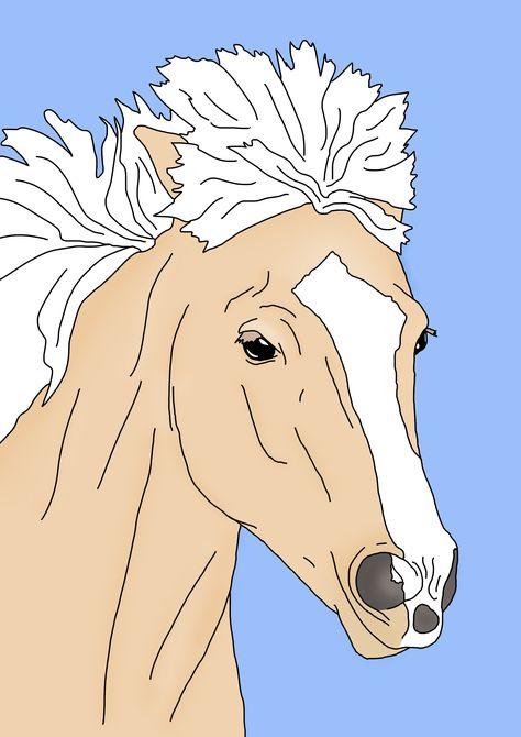 Islandpferde Zeichnen Pferde Illustration Islandpferde Ponys Zeichnen